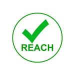 REACH - Logo