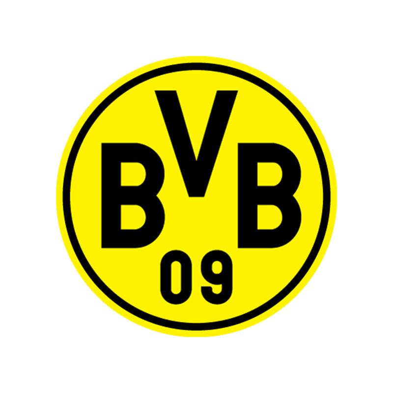 Referenzen_Profi-Sportverein-BVB-Borussia-Dortmund